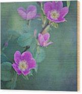 Wild Roses Wood Print by Priska Wettstein
