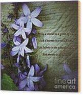 Wild Star Flowers And Innocence  Wood Print