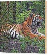 Wild Tiger Wood Print