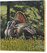 Wild Turkey 2 Wood Print