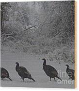 Wild Turkey Winter Wood Print