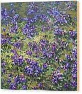 Wild Violets  Wood Print