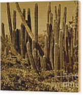Wild West Ivb Wood Print