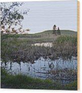 Wild Wetland Wood Print