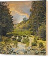 Wild Wetlands Wood Print