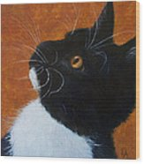 Wild Whiskers Wood Print