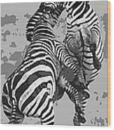 Wild Zebras Wood Print