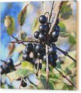 Wildberry Plant Wood Print