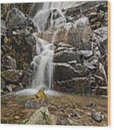 Wildcat Falls Yosemite  Wood Print