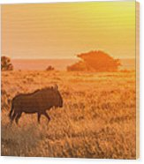 Wildebeest Sunset - Namibia Africa Photograph Wood Print