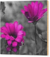 Wildflower 2 Wood Print