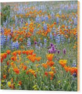Wildflower Dreamin Wood Print