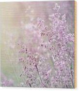 Wildflower Fine Art Background Wood Print