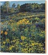 Wildflower Hillside Wood Print