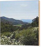 Wildflower Mountain View Wood Print