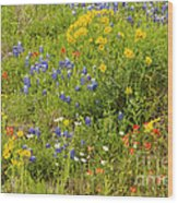 Wildflower Patch Wood Print