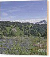 Wildflower Vista Wood Print