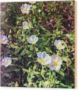 Wildflower Wandering Wood Print