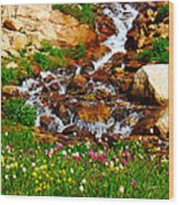 Wildflower Waterfall Wood Print