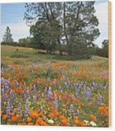 Wildflower Wonderland 3 Wood Print
