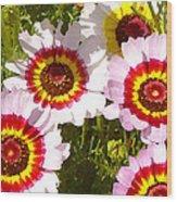 Wildflowerd Wide 1 Wood Print