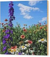Wildflowers #7 Wood Print