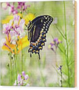Wildflowers And Butterfly Wood Print