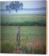 Wildflowers And Fog Wood Print