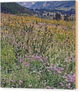 Wildflowers And Mountains  Wood Print