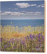 Wildflowers And Ocean Wood Print