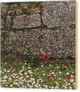 Wildflowers And Olympia Ruins   #9508 Wood Print