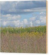 Wildflowers And Ornamental Grass Wood Print