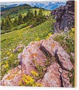 Wildflowers And Pink Rocks Wood Print