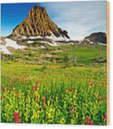 Wildflowers At Logan Pass Wood Print