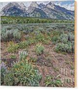 Wildflowers Bloom Below Teton Mountain  Range Wood Print