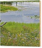 Wildflowers By Heron Pond In Grand Teton National Park-wyoming Wood Print