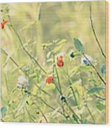 Wildflowers In Bloom Wood Print