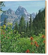 1m9372-v-wildflowers In Cascade Canyon, Tetons Wood Print