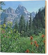 1m9371-h-wildflowers In Cascade Canyon, Tetons Wood Print