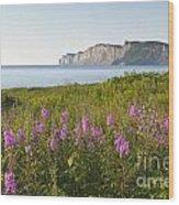 Wildflowers In Gaspe Wood Print
