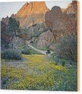 1b6430 Wildflowers In Pinnacles National Park Wood Print