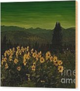 Wildflowers In The Beartooth Mountains Wood Print
