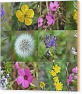 Wildflowers Mosaic Wood Print