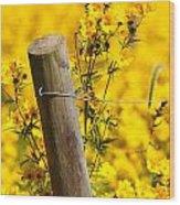 Wildflowers On Fence Post Wood Print