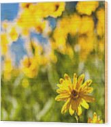 Wildflowers Standing Out Abstract Wood Print