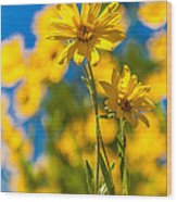 Wildflowers Standing Out Wood Print