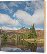 Wildlife Pond - Bethlehem New Hampshire Usa Wood Print
