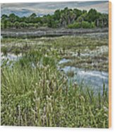 Wildlife Refuge Reflections Wood Print