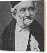 Wilhelm Eduard Weber (1804-1891) Wood Print