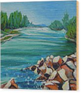 Willamette River 1.2 Wood Print